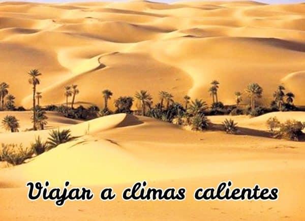 paisaje climas calientes (desierto con palmeras)