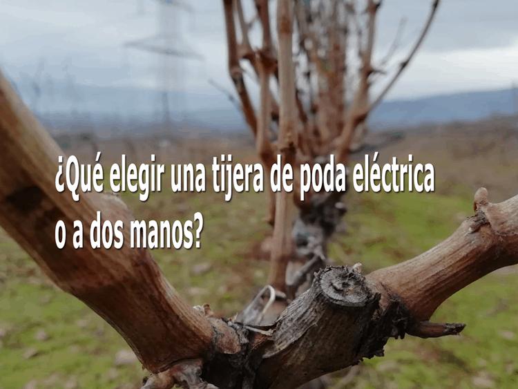 ¿Qué elegir una tijera de poda eléctrica o a dos manos